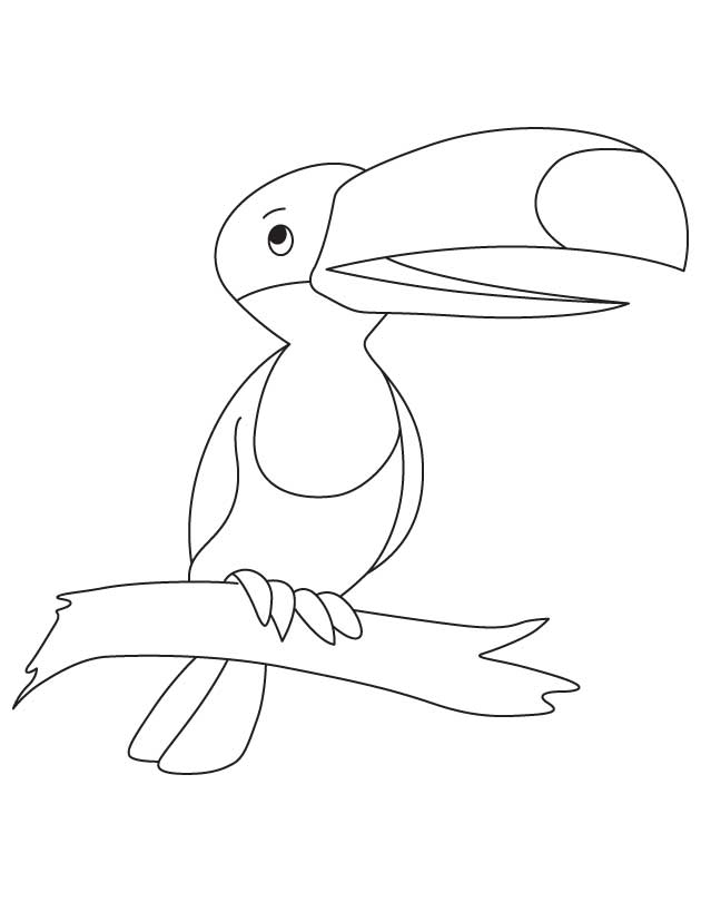 Cute Cartoon Toucan Coloring Pages