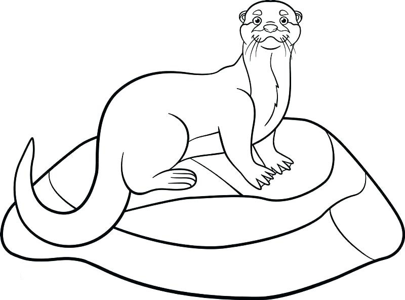 Cute Otter Coloring Page Printables