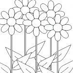 Daisy Flowers Growing Coloring Page