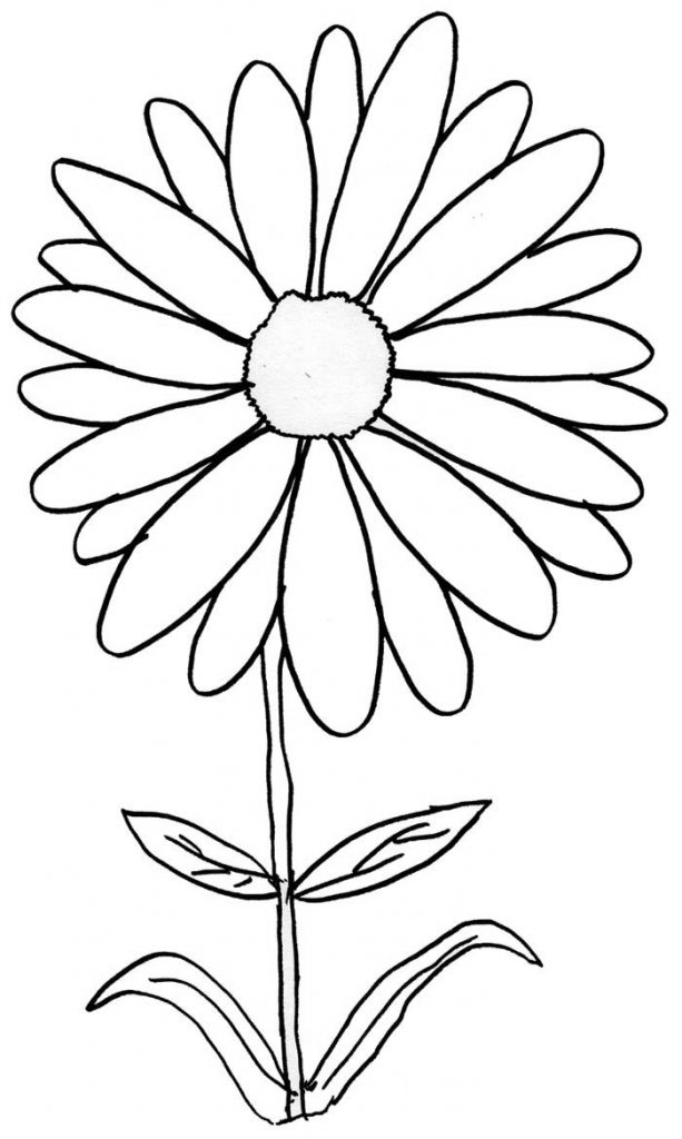 Daisy Printable Coloring Pages