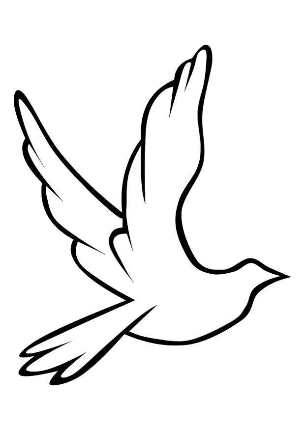 Dove Line Art to Color
