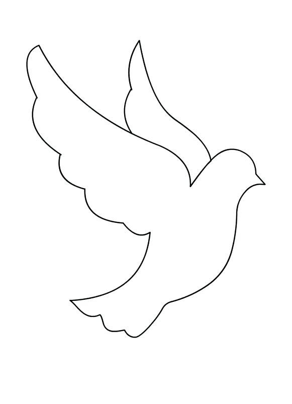 Dove Outline Coloring Page