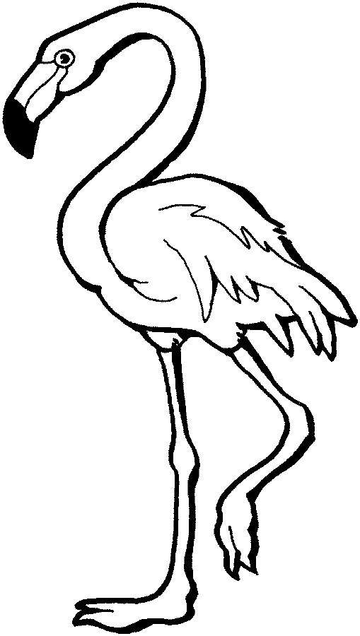 Easy Flamingo Coloring Pages