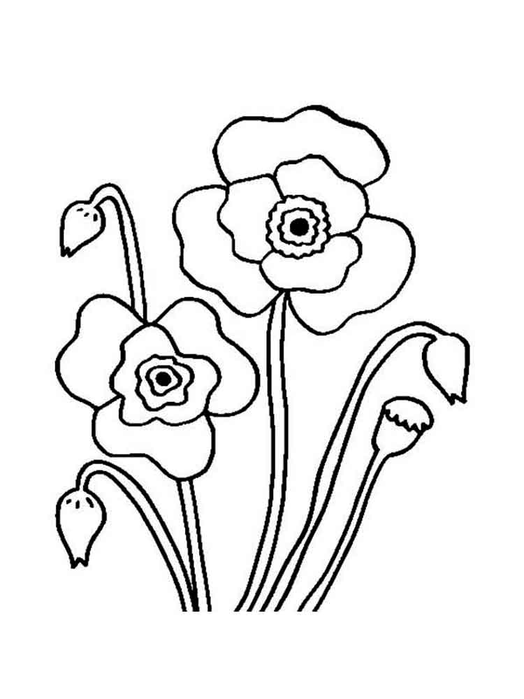 Easy Poppies Coloring Page