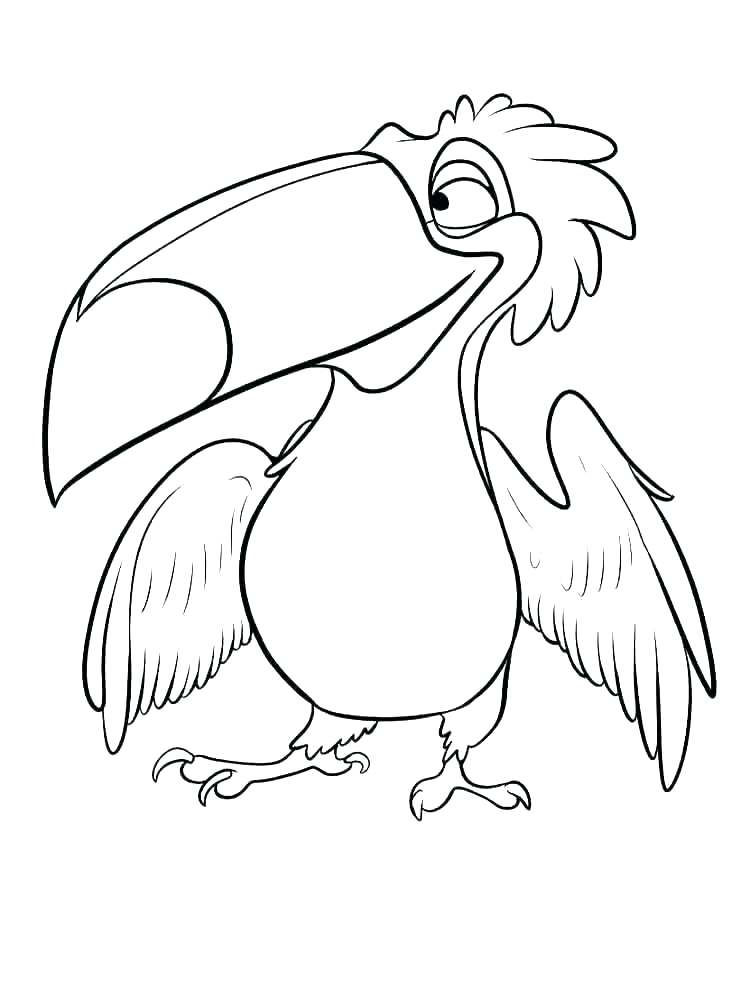Toucan coloring picture sheets - Zoo animals 032 | Zoo coloring ... | 1000x750