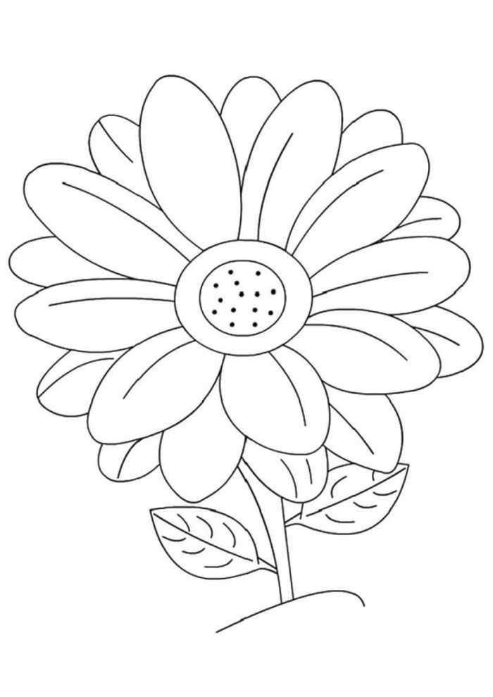 One Daisy Flower Flower Coloring Page