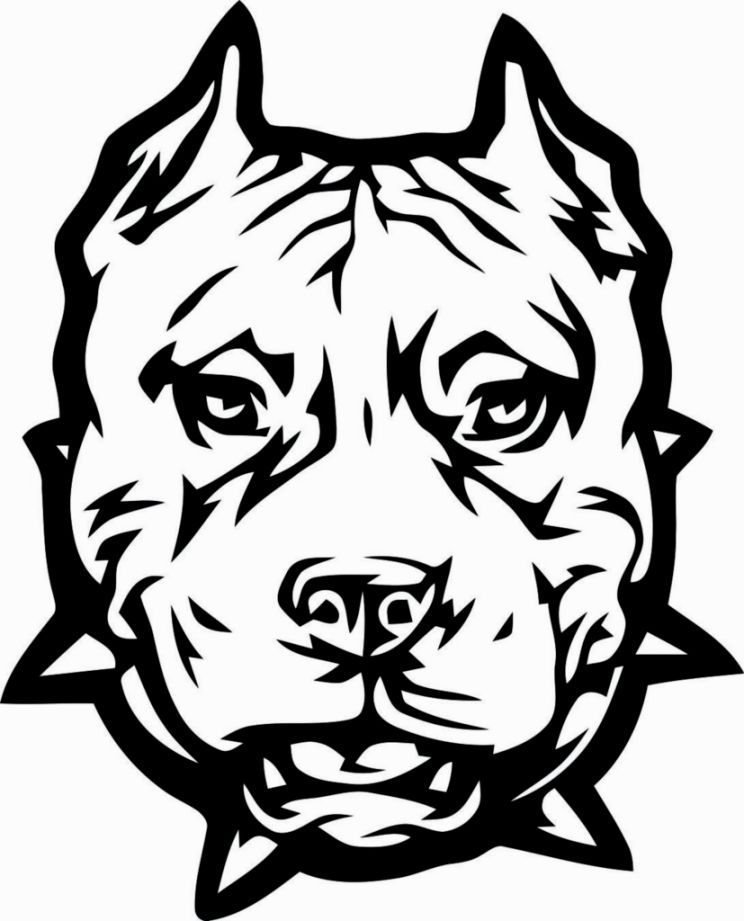 Pitbull Head Coloring Page
