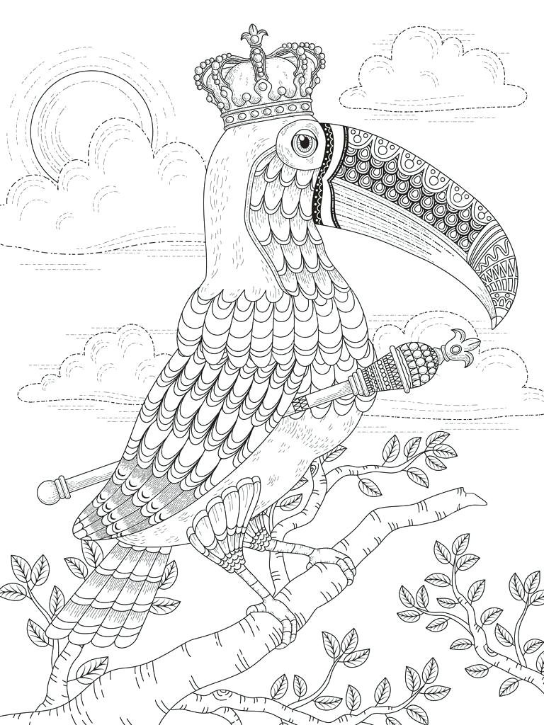 Toucan Coloring Pages For Adults