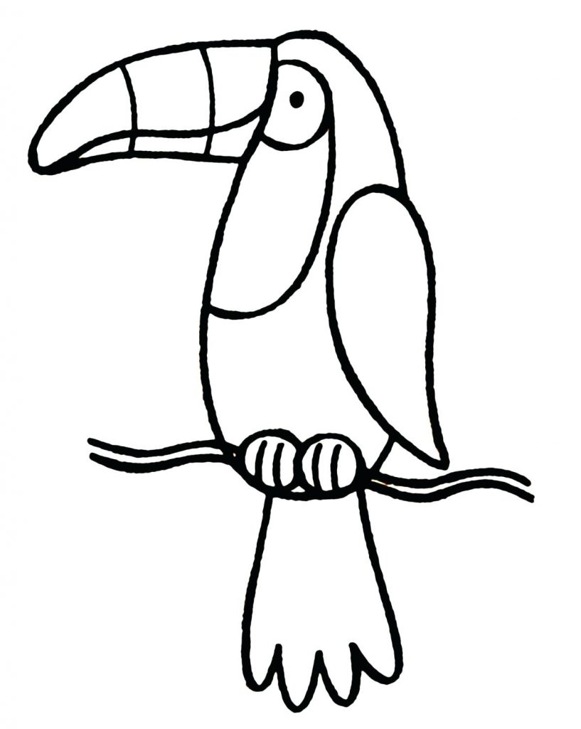 Toucan Line Art Coloring Pages