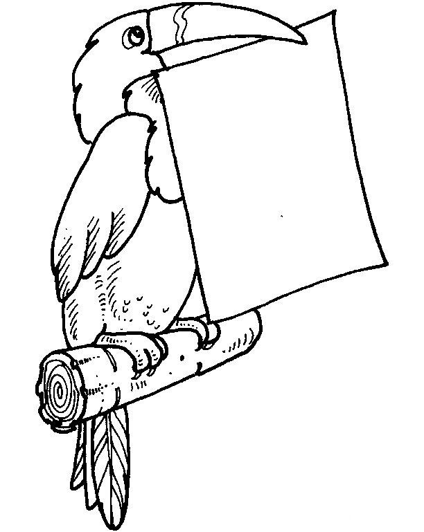 Toucan With A Note Coloring Pages