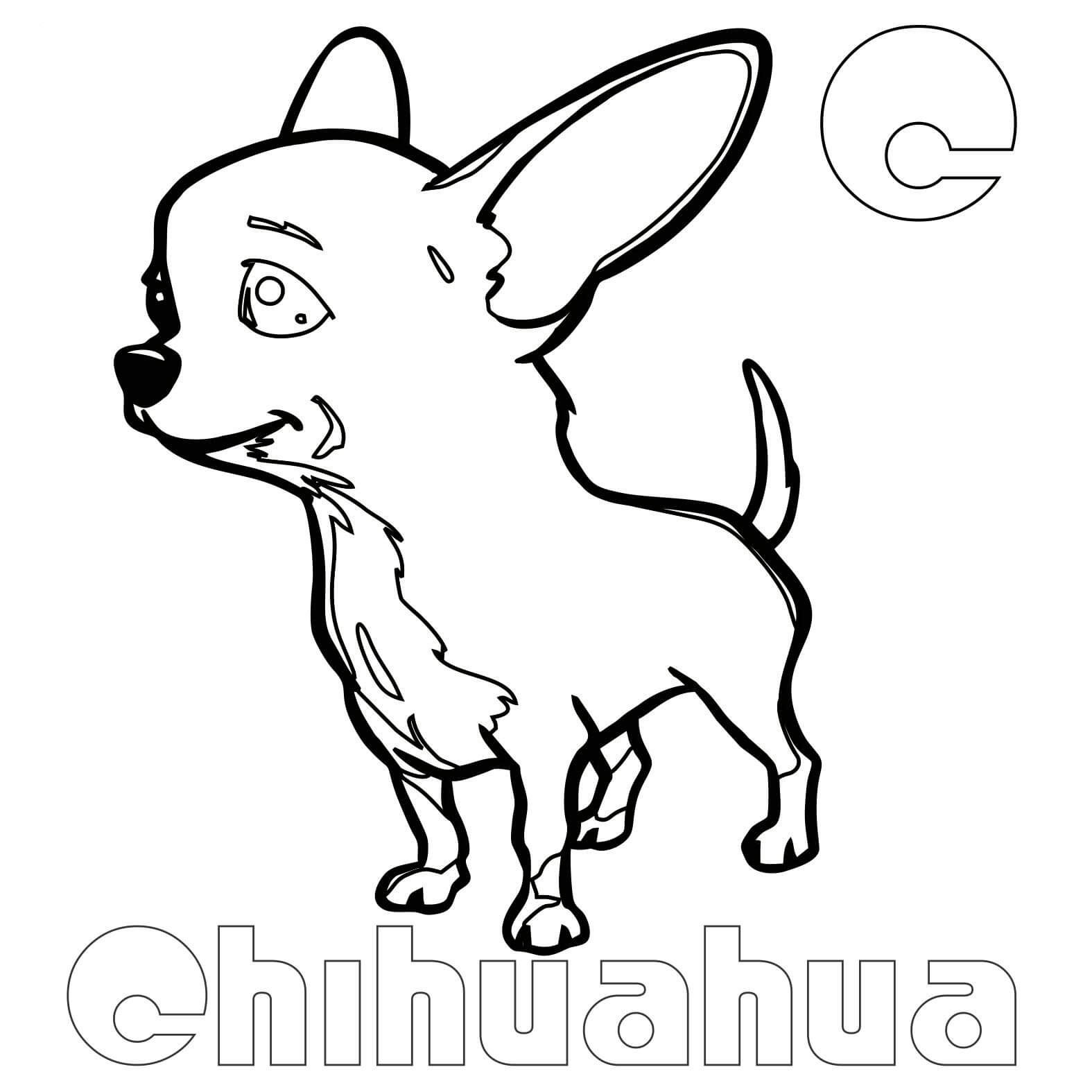 Chihuahua Coloring Pages Best Coloring Pages For Kids