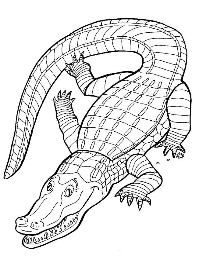 Crocodile Reptile Coloring Pages