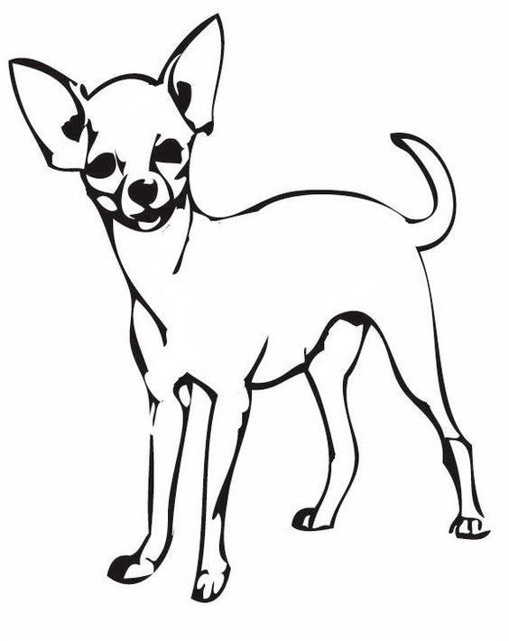 Easy Chihuahua Line Art Coloring Pages