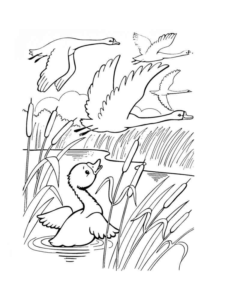 Flying Swans Coloring Page