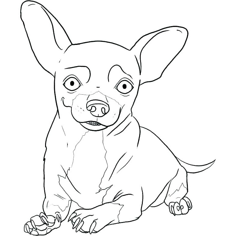Happy Chihuahua Coloring Page