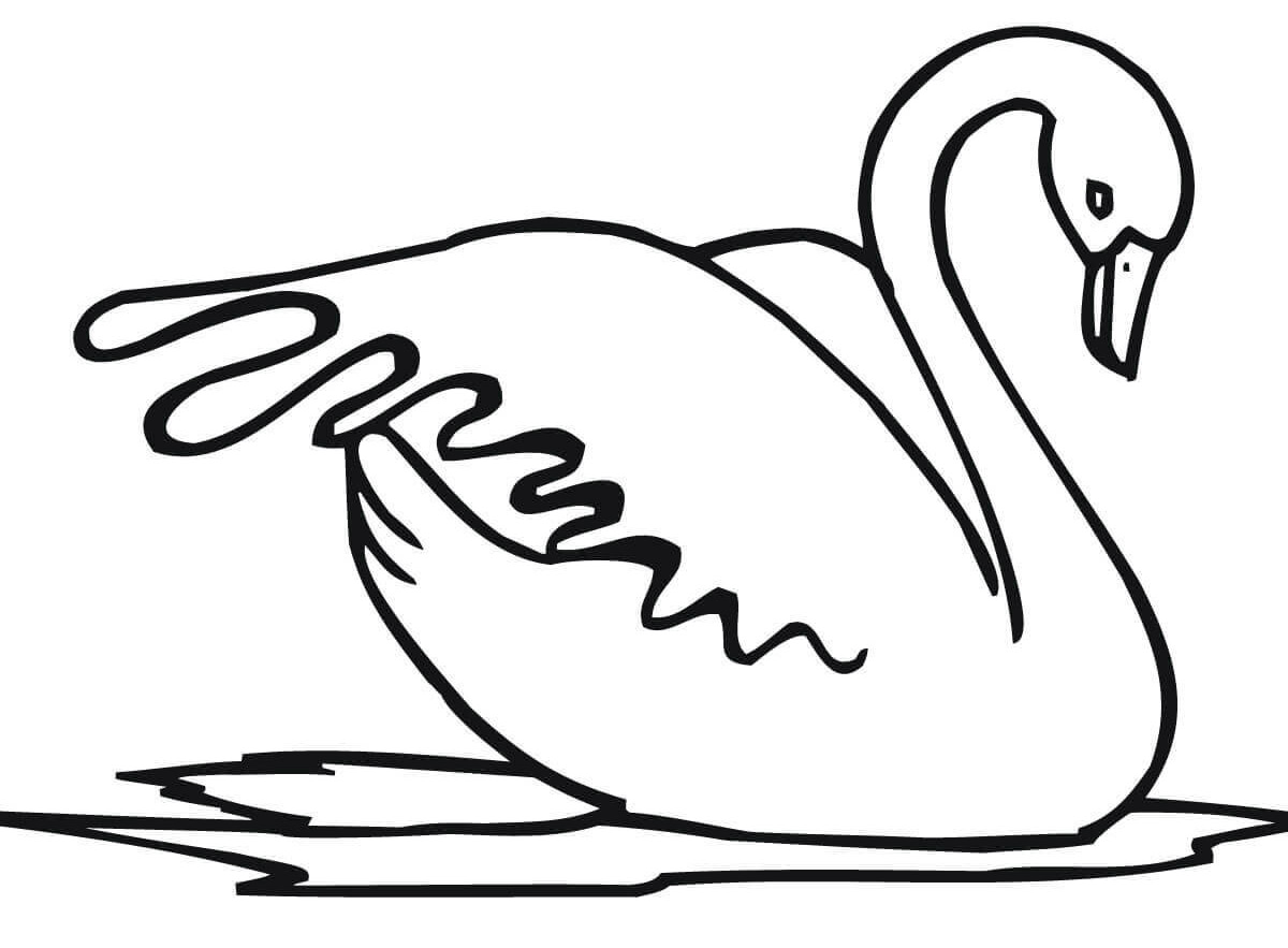 Swan Coloring Pages Best Coloring Pages For Kids