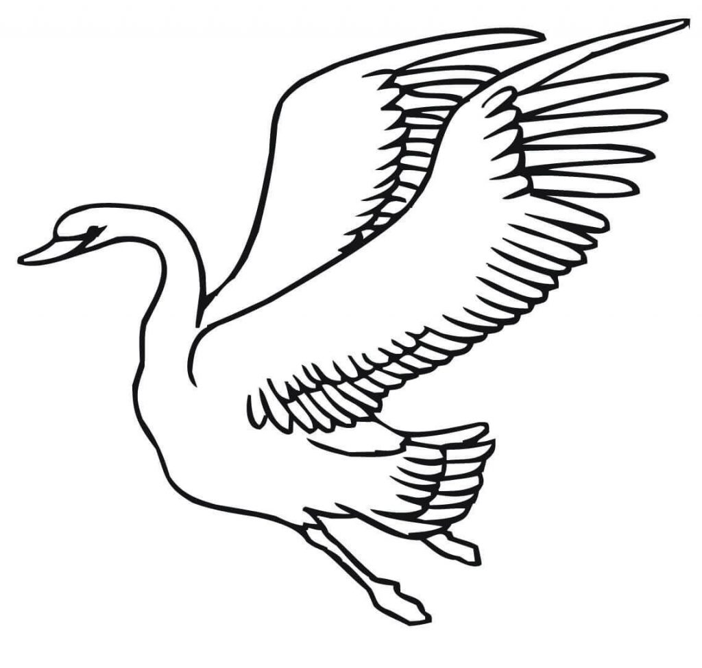 Swan Flying Coloring Page