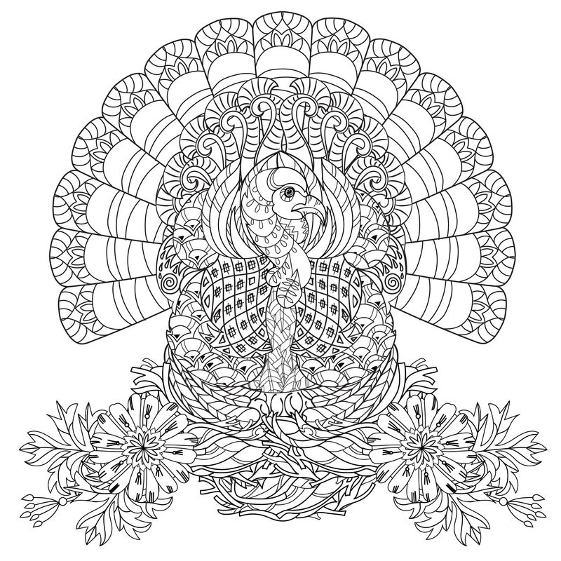Beautiful Turkey Coloring Page For Adults