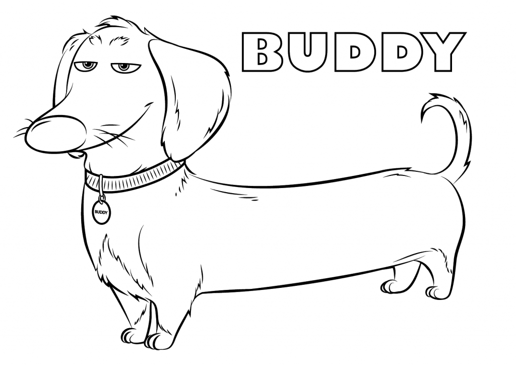 Buddy Dachshund Dog Coloring Page