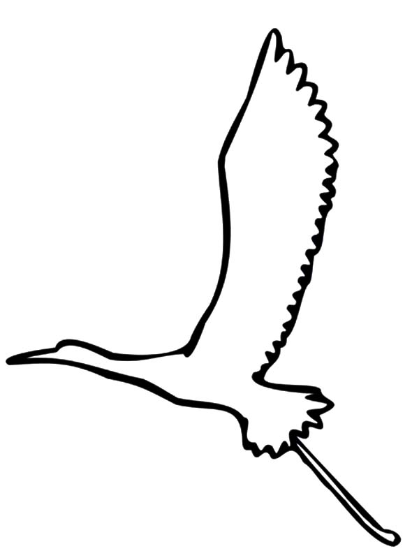Crane Bird Line Art Coloring Page