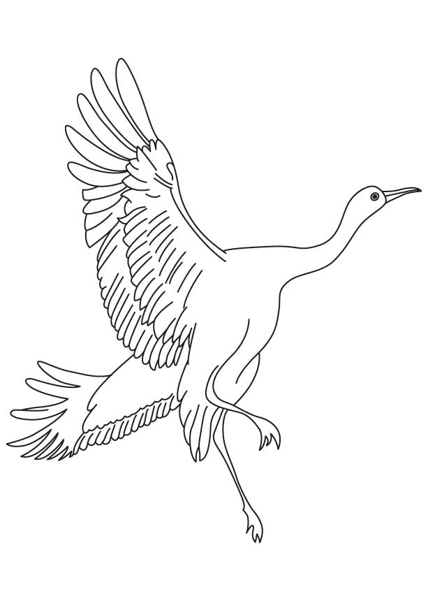 Crane Flying Coloring Page