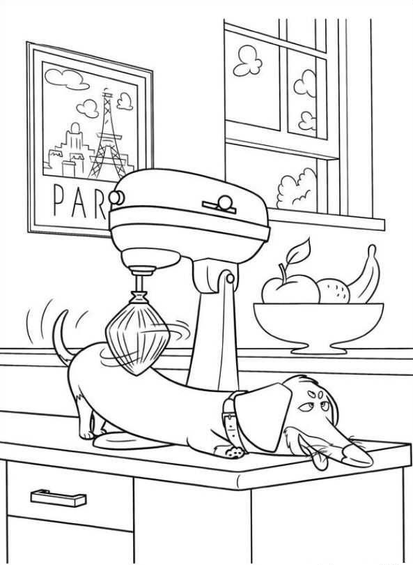 Dachshund Massage Coloring Pages
