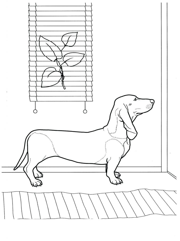 Dachshund Waiting At Door Coloring Pages