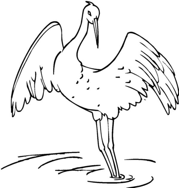 Easy Crane Coloring Page