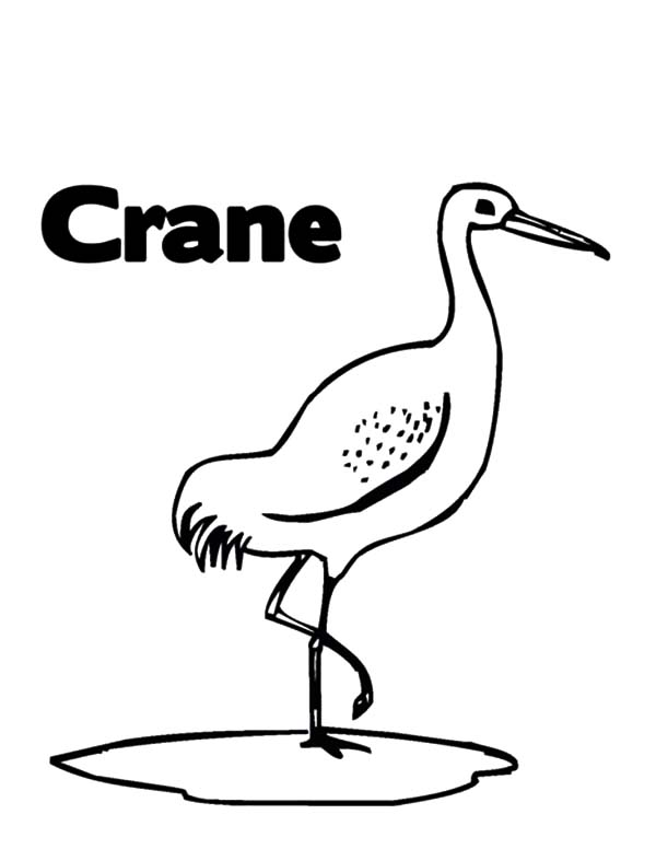 Easy Crane Coloring Pages