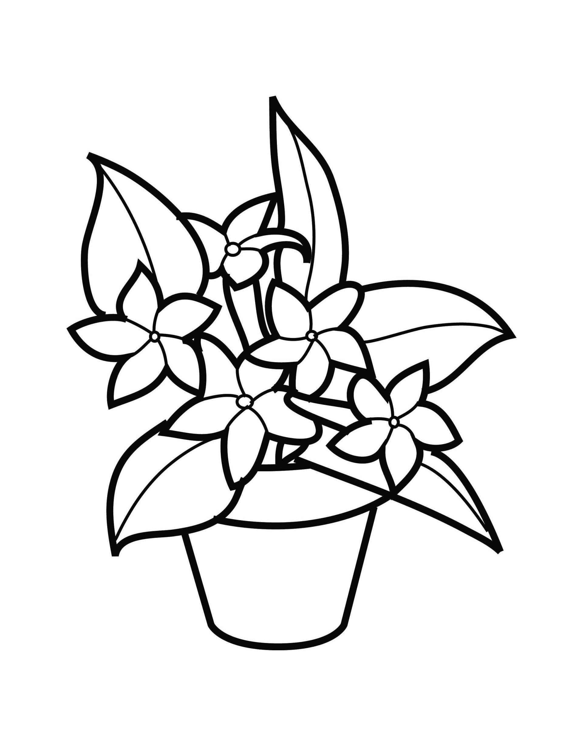 Flower Pot Coloring Pages Best Coloring Pages For Kids