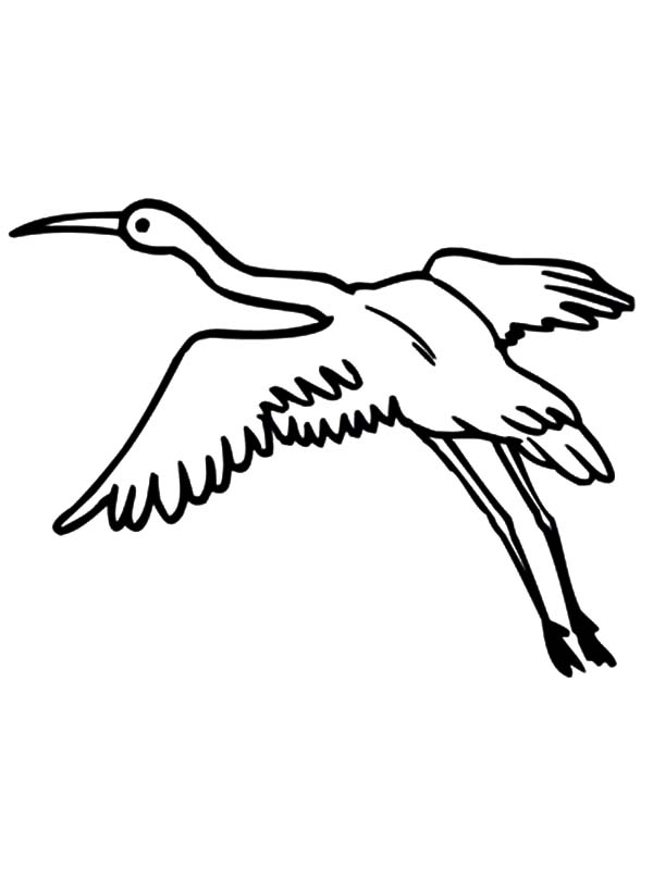Flying Crane Coloring Pages