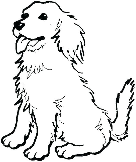 Fun Golden Retriever Coloring Pages