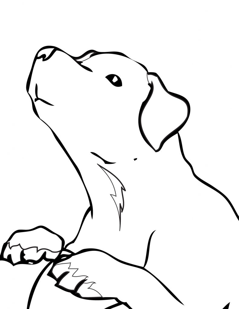 Simple Golden Retriever Coloring Pages