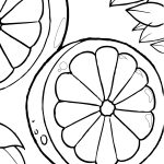 Orange Slices Coloring Pages