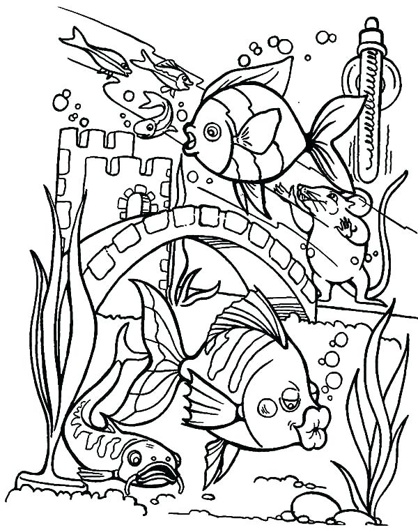 Beautiful Aquarium Coloring Pages