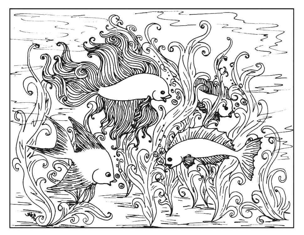 Beautiful Fish Coloring Page