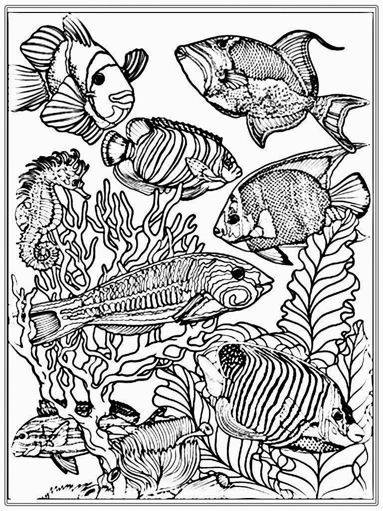 Fish In Aquarium Coloring Pages
