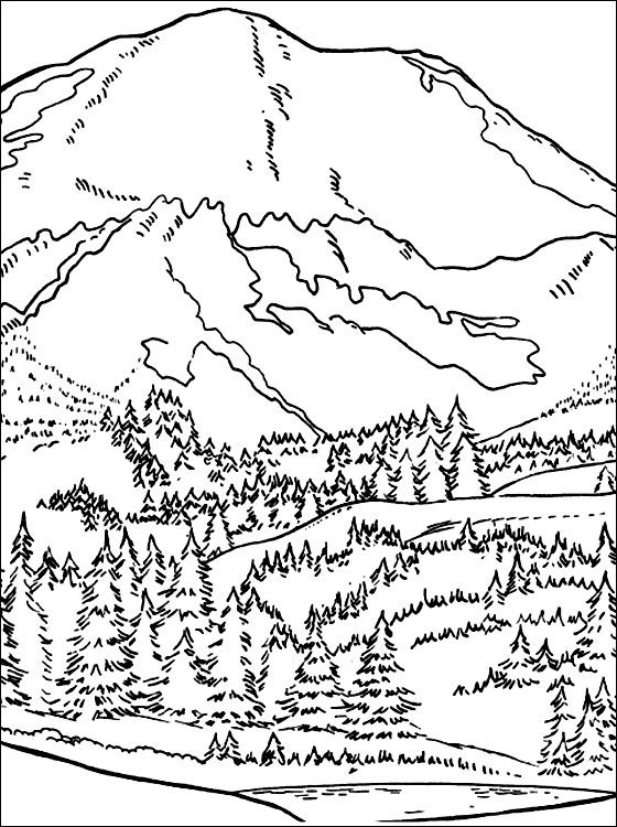 Forest In The Mountains Coloring Page