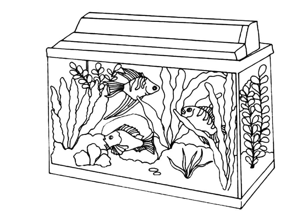 Small Aquarium Coloring Pages