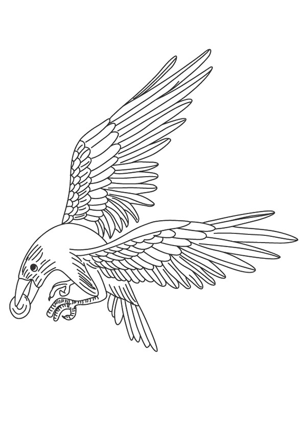 Crow Coloring Pages