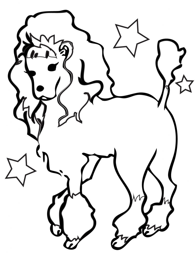 Pretty Poodle Coloring Page