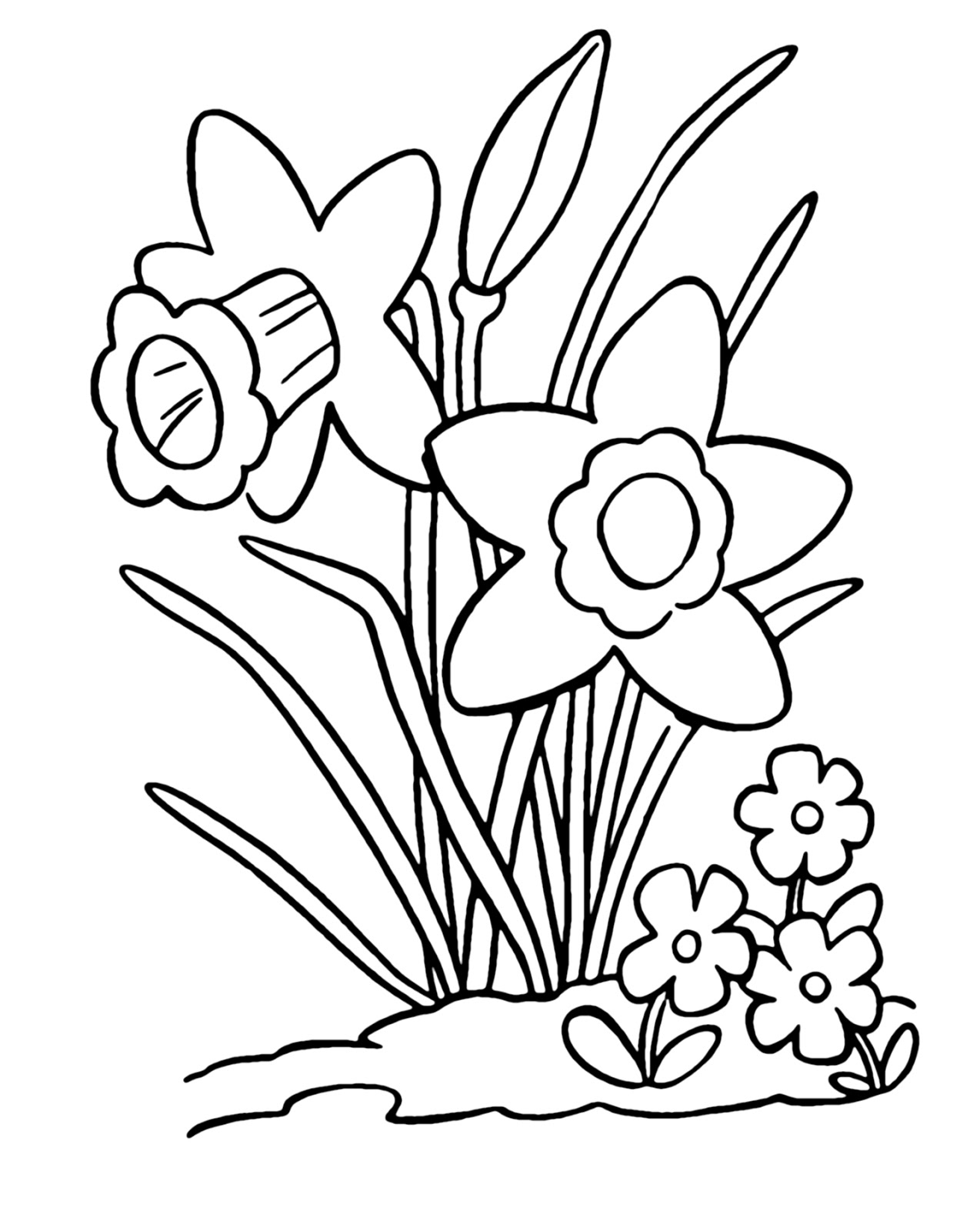 Daffodils Coloring Pages