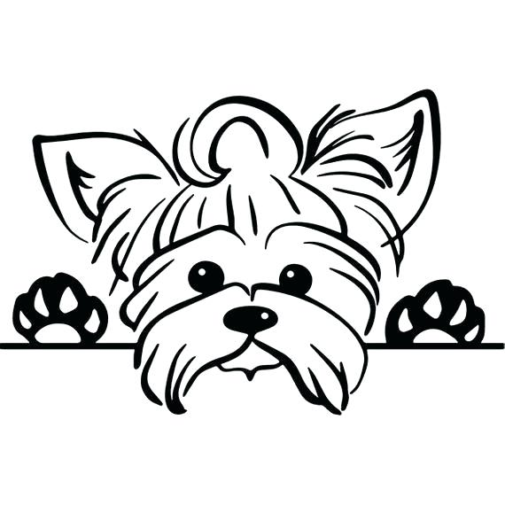 Cute Yorkie Coloring Pages