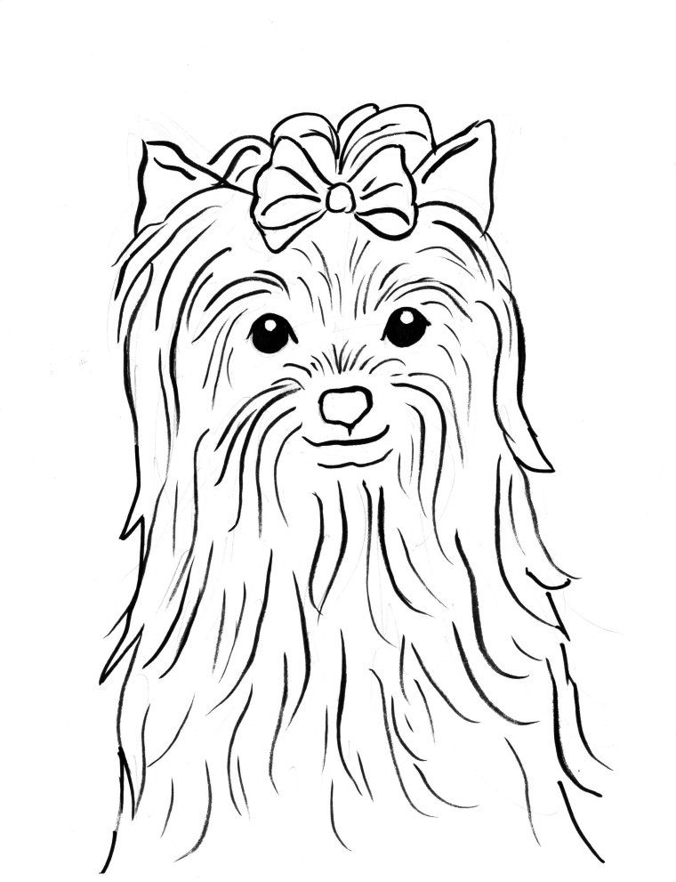 Pretty Yorkie With Bow Coloring Page