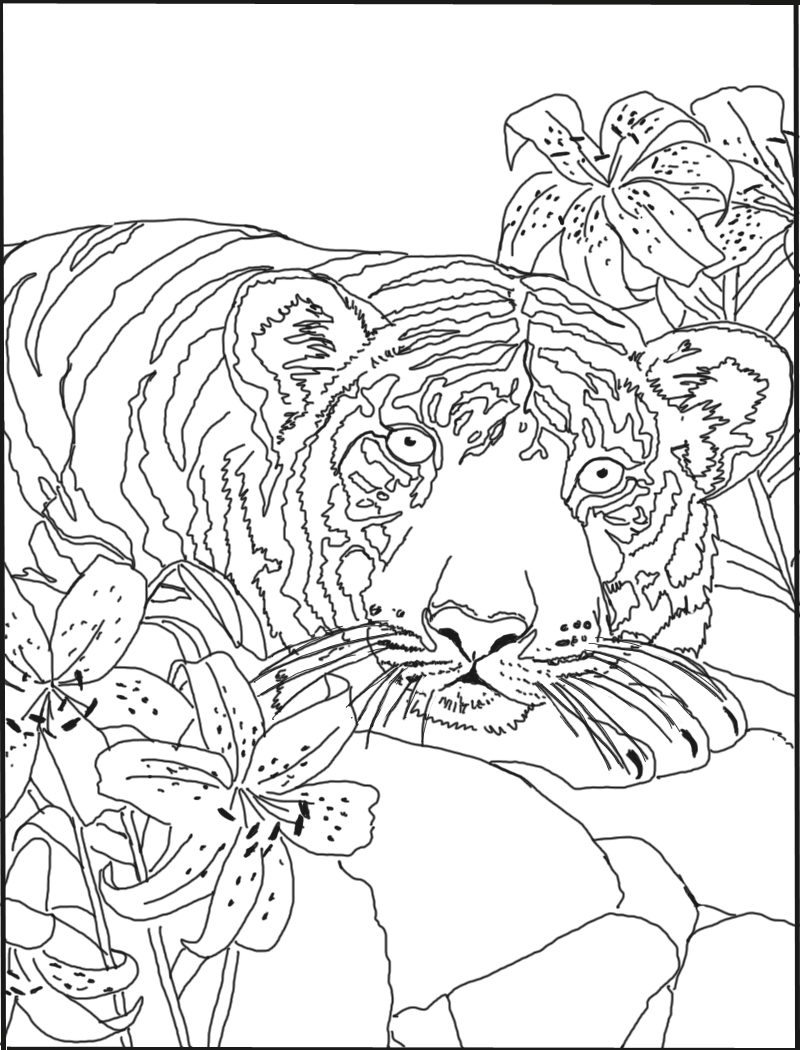 Tiger With Lilies Coloring Page
