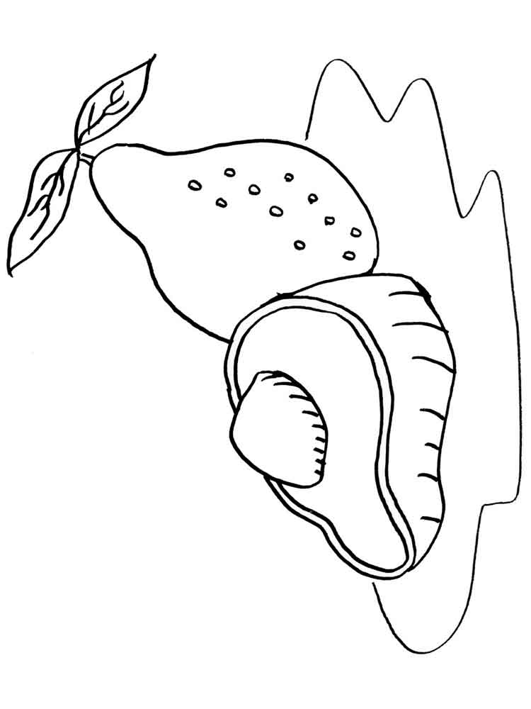 Avocado Coloring Pages
