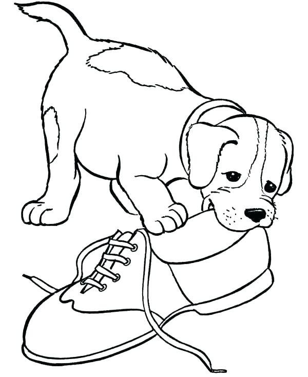 Beagle Chewing On Shoe Coloring Page