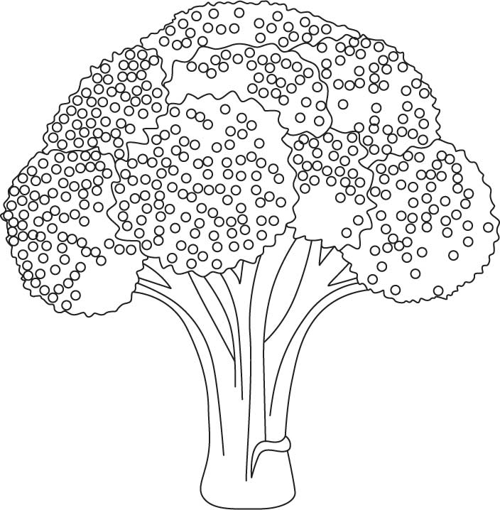 Broccoli Coloring Pages