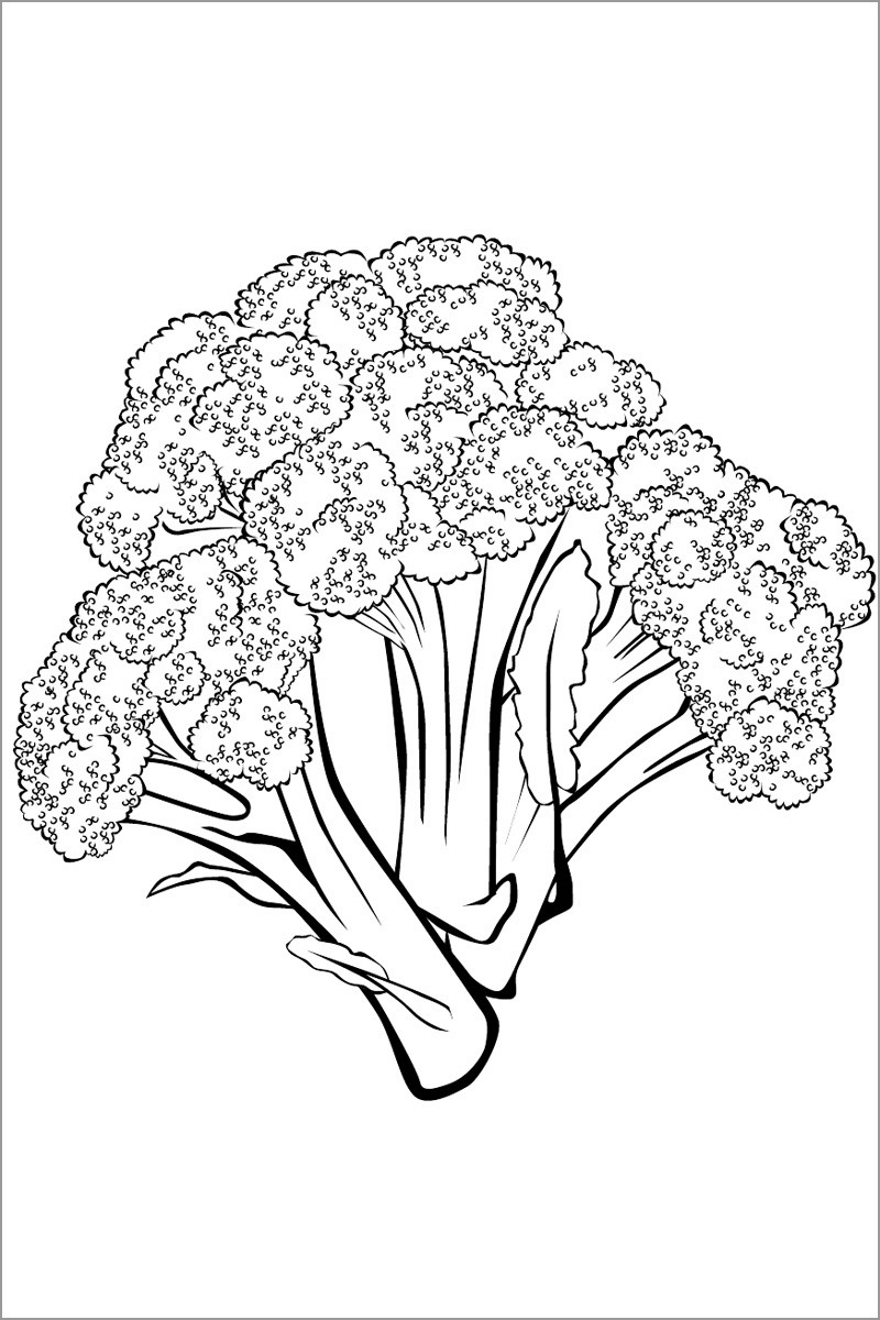 Broccoli Stalks Coloring Pages