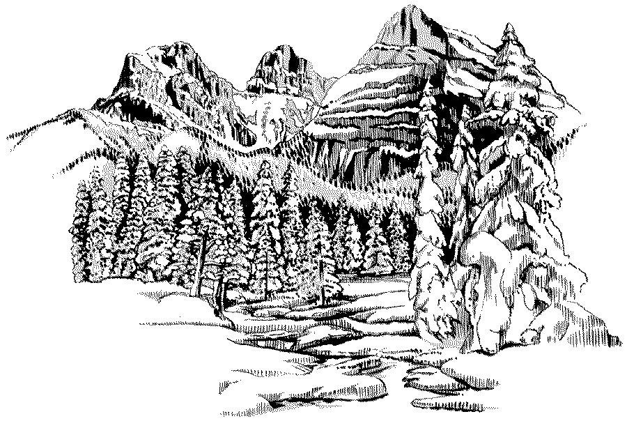 Forest Landscape Coloring Pages